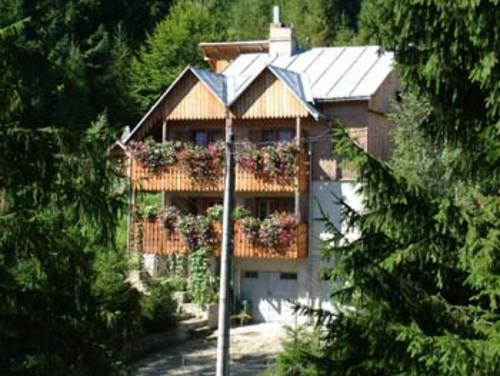 Foto von Gasthaus/Suceava und Umgebung