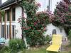 Garten-Ferienhaus / Studio im Haupthaus