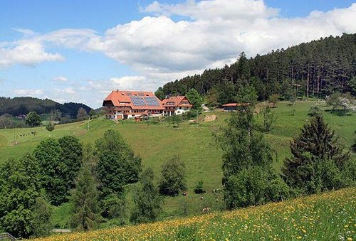 Fleigenhof