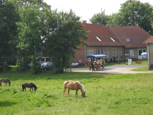 Bauernhof in Lübz