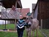 Kind mit Esel auf dem Spielplatz