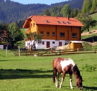 Reiterbauernhof MAHO