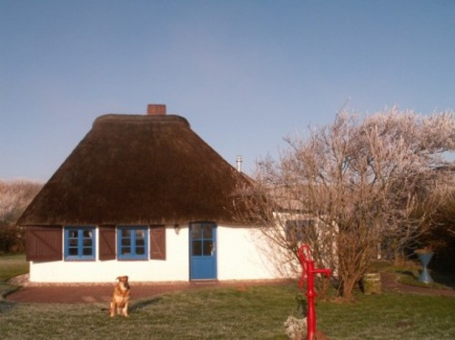 Foto von Bio-Ferienhaus/Eiderstedt, Halbinsel