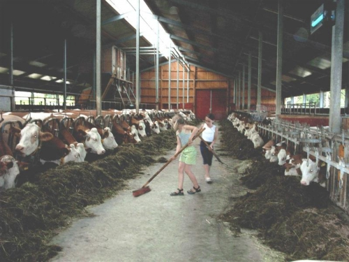 Bauernhof in Regen