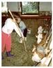 Urlaub auf dem Bauernhof mit Stallarbeiten