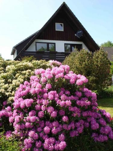 Foto von Ferienwohnung/Eiderstedt, Halbinsel