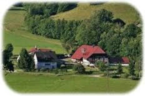 Behindertengerechte Ferienwohnung im Simonswald - Bauernhof, Baden-Württemberg