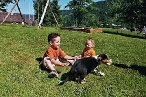 Urlaub auf dem Bauernhof in Simonswald