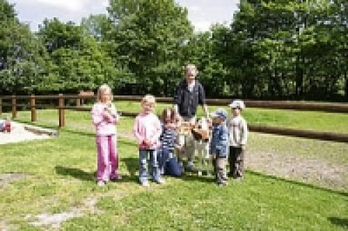 Bauernhof mit Spielplatz, Spiel- und Aufenthaltsraum, Spielscheune, Trampolin, Go-Karts, Riesensandkasten, Trampelfahrzeuge, Tischtennis
