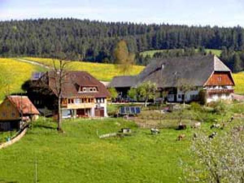 Foto von Bio-Bauernhof/Schwarzwald