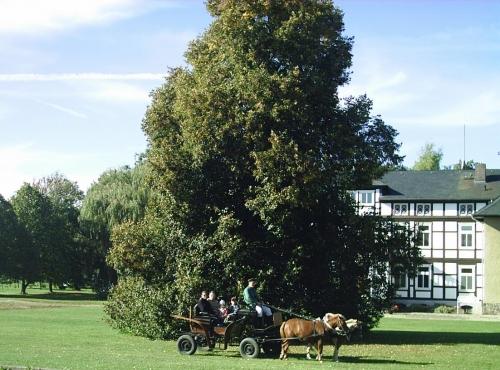 Foto von Bauernhof/Altmark