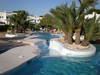Ferienhaus unter Palmen mit großem Pool