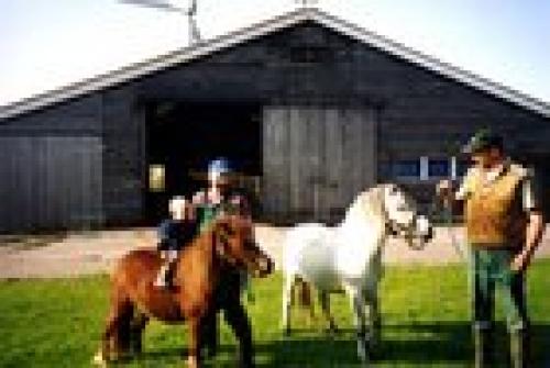 Foto von Bauernhof/Ostfriesland - Ostfriesische Inseln