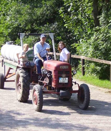 Familienurlaub auf dem Bauernhof in Willingen Hessen - Urlaub, Waldecker Land