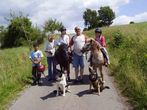 Bauerhofurlaub besonders für die Kleinen. Geboten werden kostenloses Ponyreiten, Streicheltiere, Treckerfahrten, Spielscheune