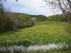 Urlaub auf dem Bauernhof in Edertal - Bauernhof , Edersee