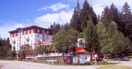 Waldhotel am Pass