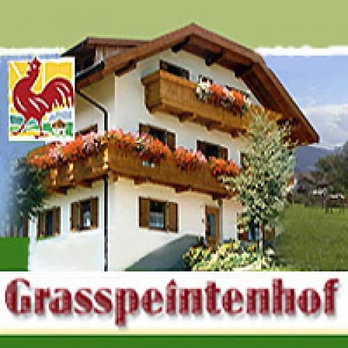 Grasspeintenhof