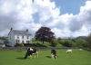Thorngarth Country Guest House