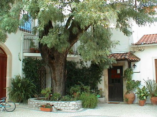 Casa dos Arrabidos