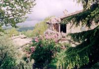 Bio - Gästehaus Dichte Eichenwälder und Tiere