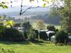 Camping Le Pommier Rustique ***
