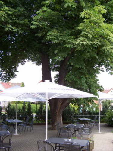 Pension in Glindenberg