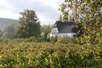 Weingut-Winzerhof
