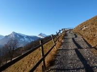 Urlaub auf der Berghütte